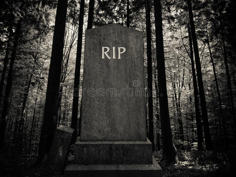 Spooky Forest Gravestone. Spooky RIP Gravestone In A Dark Forest Setting royalty free stock photo