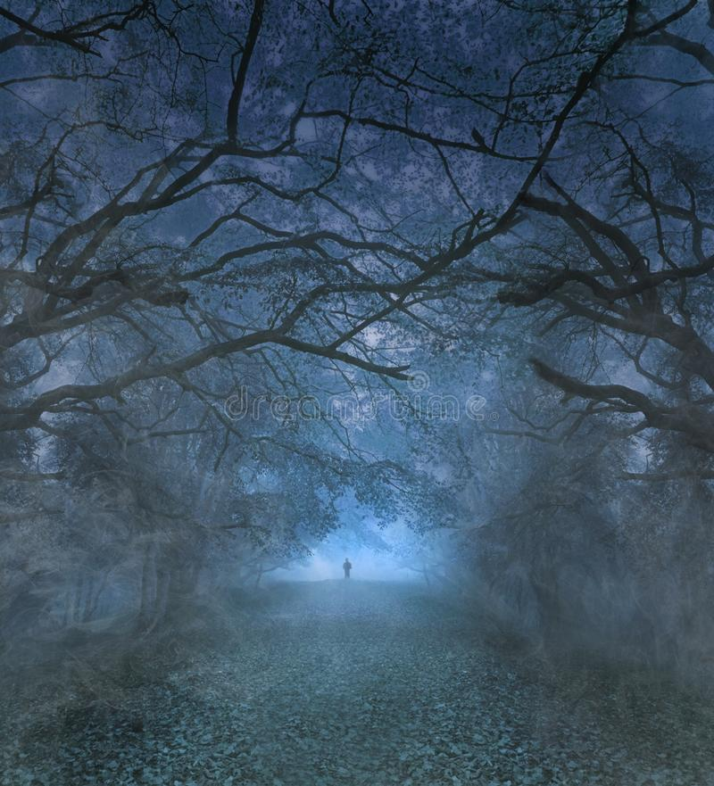 Spooky Halloween forest at night ghostly figure royalty free stock photos