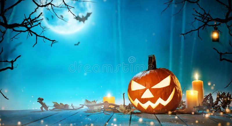 Spooky halloween pumpkin in forest stock photos
