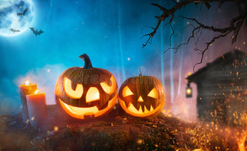 Spooky halloween pumpkins in dark mistery forest stock photography