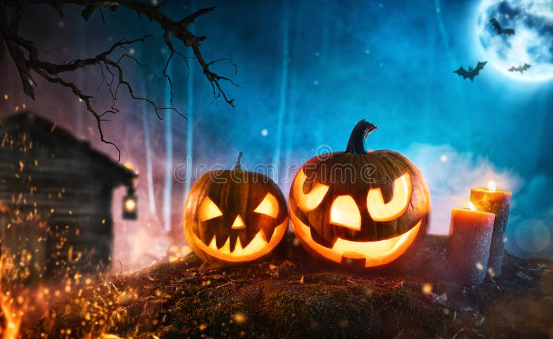 Spooky halloween pumpkins in dark mistery forest royalty free stock images