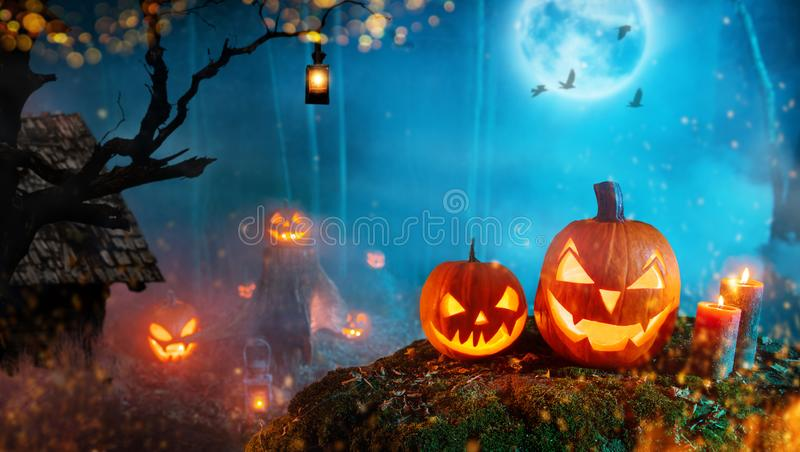 Spooky halloween pumpkins in dark mistery forest stock photo