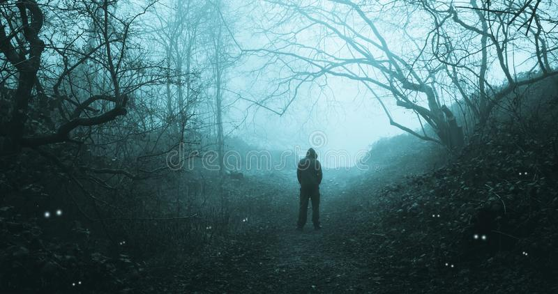 A spooky hooded figure walking through a forest with scary glowing eyes looking out from the darkness and undergrowth.  stock image