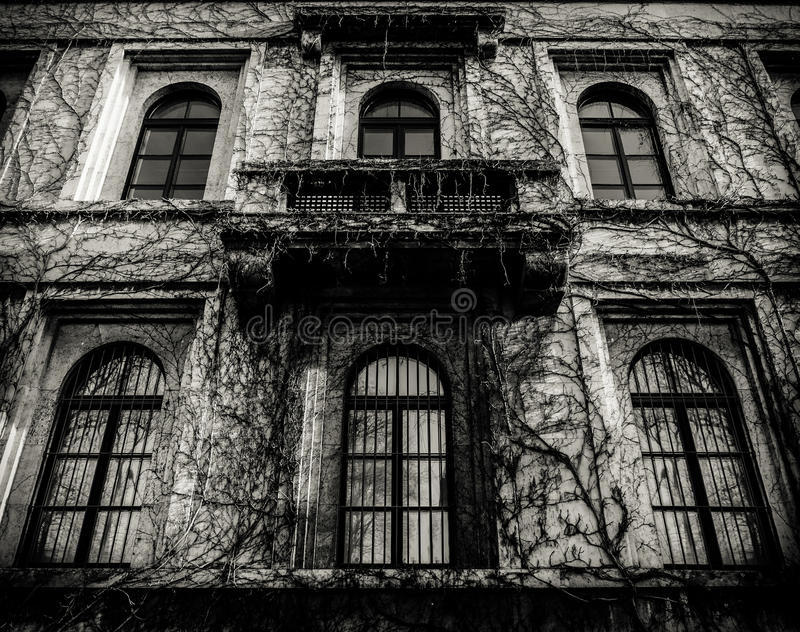 Spooky House With Dead Vines royalty free stock photos