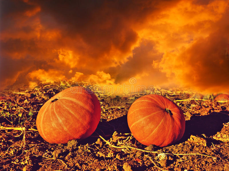 Spooky image of two pumpkins on a background of fire and smoke (. Halloween, November 1st, the devil - concept stock photo