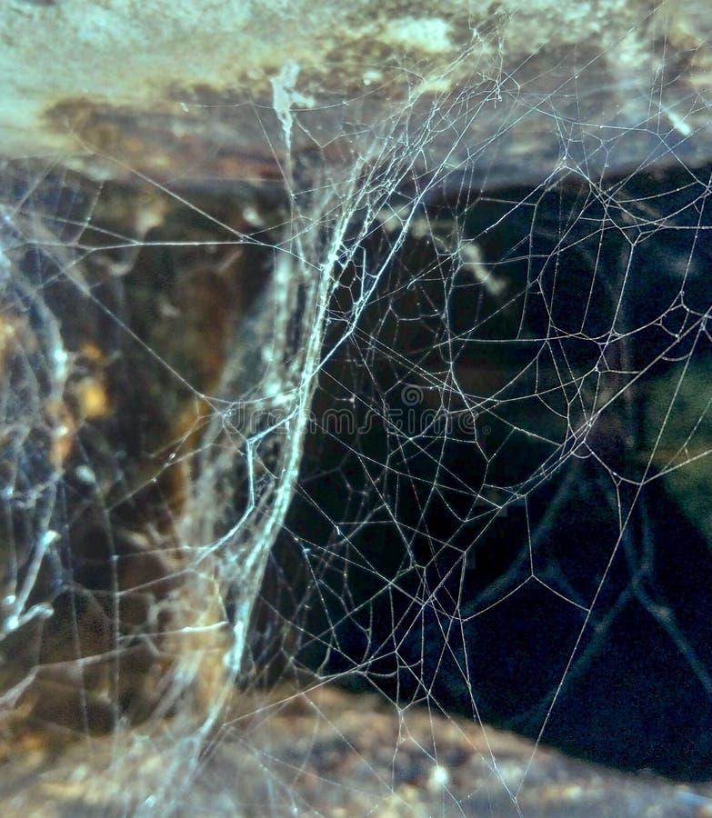 Spooky-ingang in een grot royalty-vrije stock foto