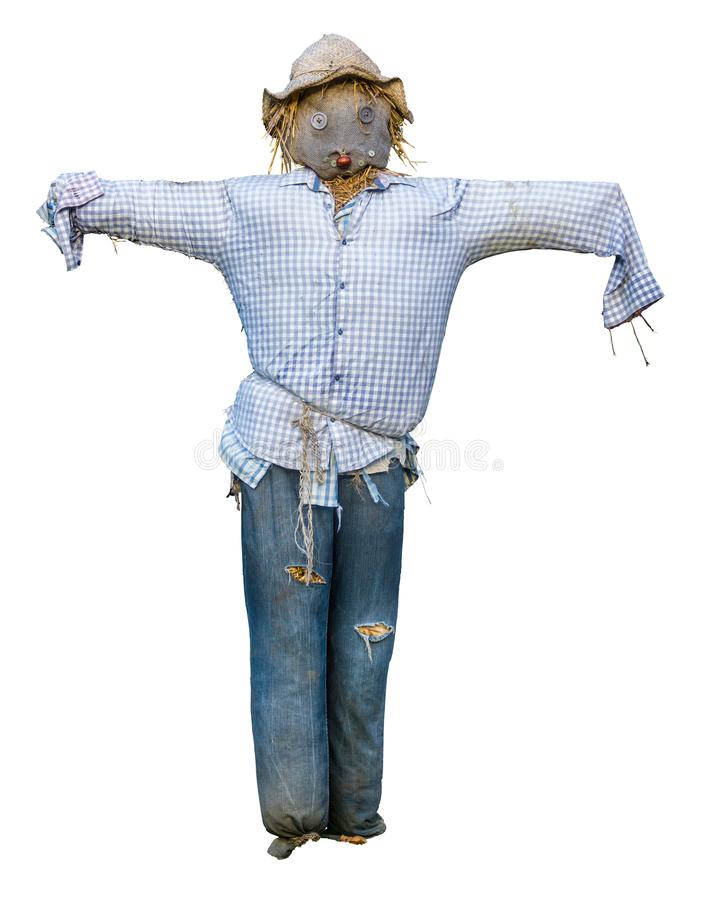 Spooky Isolated Scarecrow. With Hat And Button Eyes On White Background stock images