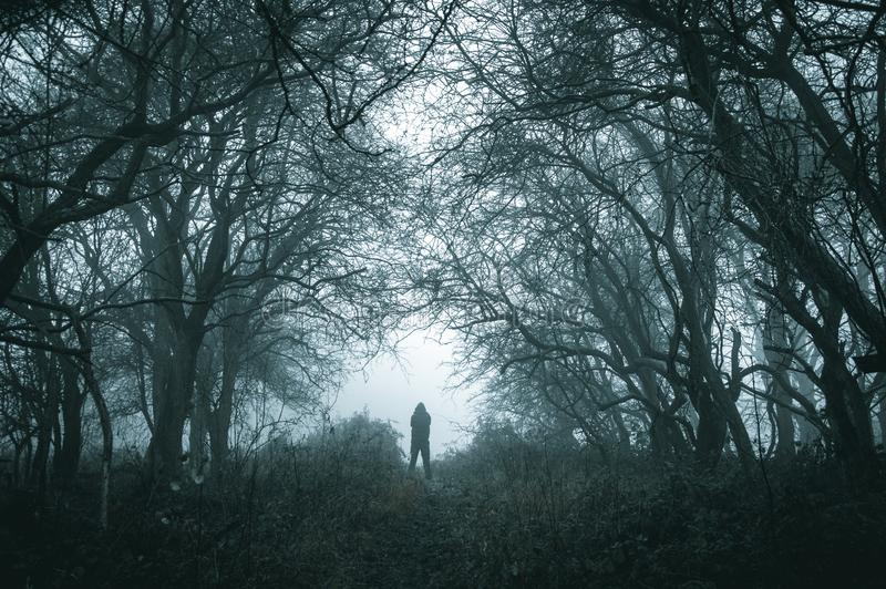 A spooky lone hooded figure on a path in a foggy forest in winter with a dark muted edit stock photos