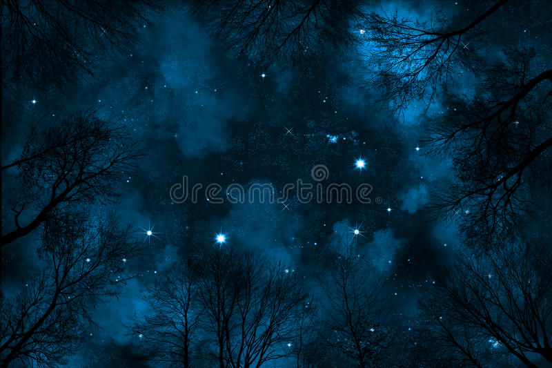 Spooky low angle view trough trees to starry night sky with blue nebula royalty free stock image