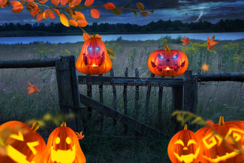 Spooky orange halloween pumpkins with glowing eyes in front of a meadow and sea royalty free stock photos