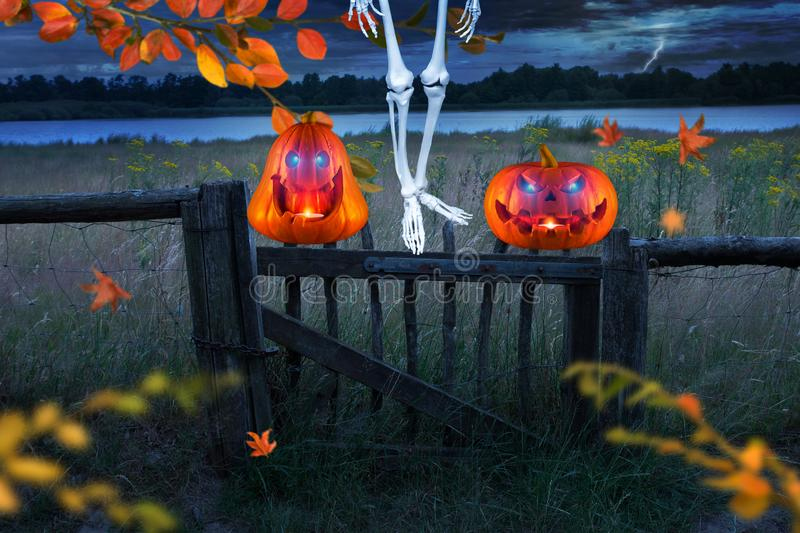 Spooky orange halloween pumpkins with glowing eyes in front of a meadow. Skeletton hanging on the tree. stock photos