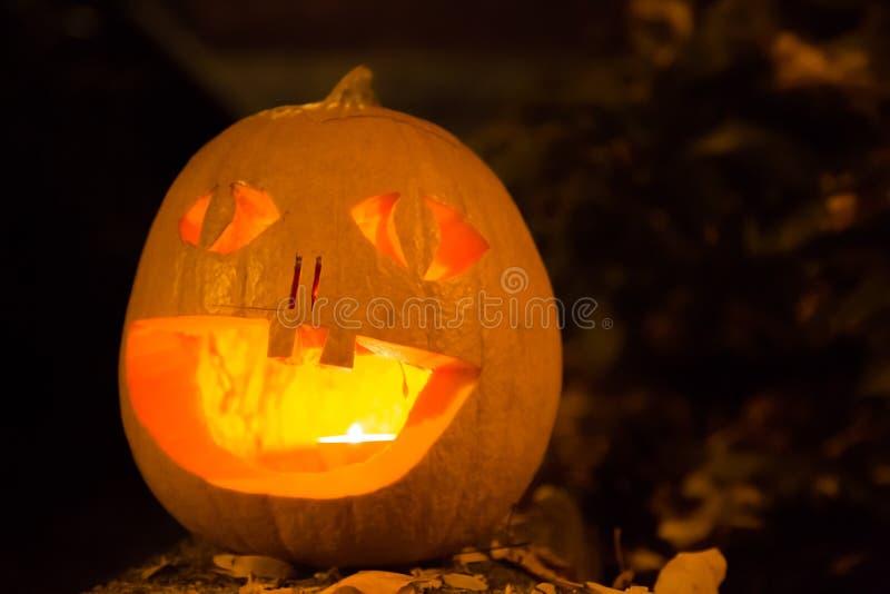 Carved halloween pumpkin spooky face dark background. Spooky orange squash lantern decoration night concept stock photography