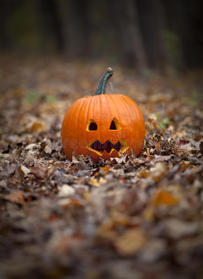 Free Spooky Pumpkin On A Path In Leaves Stock Photos - 21600983