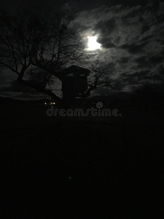 Spooky Scene With Full Moon and Tree House stock image