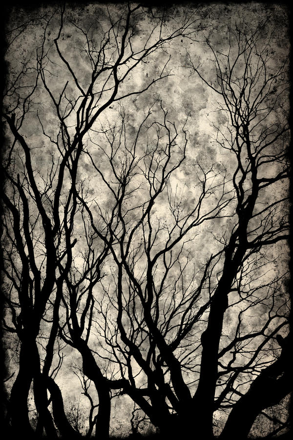 Spooky silhouette with trees and a great sky. Grunge background royalty free stock photos