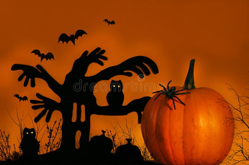 Spooky tree with pumpkin royalty free stock image