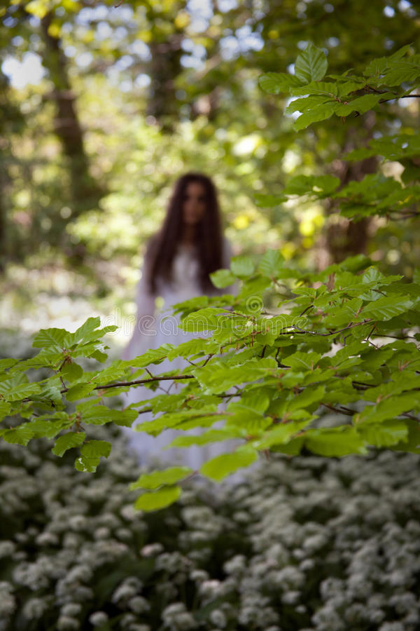 Spooky woman in long white dress standing in a forest. Out of focus woman wearing a long white medieval dress standing in a forest looking straight to camera stock images