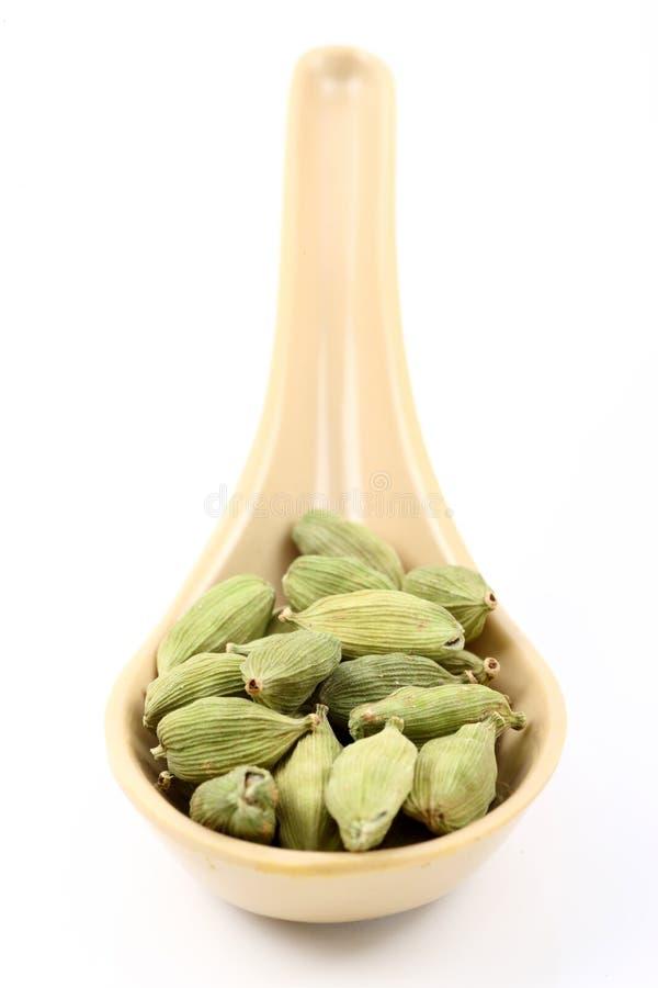 Spoon of cardamom stock photo
