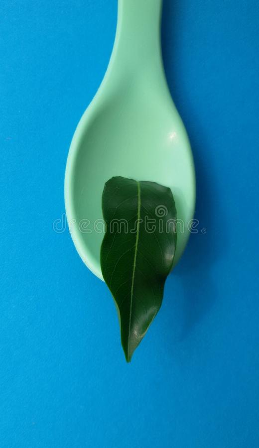 Spoon with leaf. Natural ingredients. Healthy food concept. royalty free stock photos