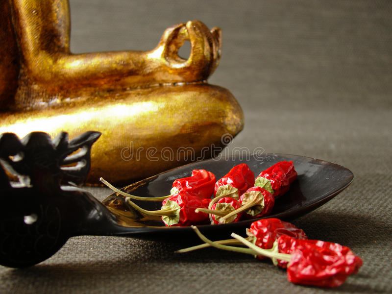 Spoon with red chilies stock photo