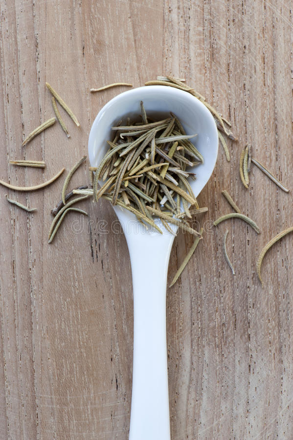Download Spoon of Rosemary stock image. Image of leaves, spoon - 20600103