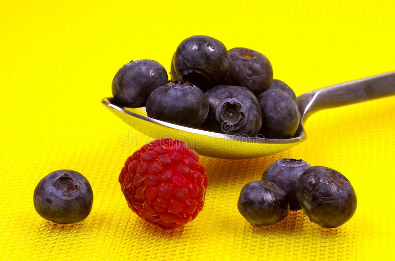 Spoonful Of Blueberries Free Stock Photo