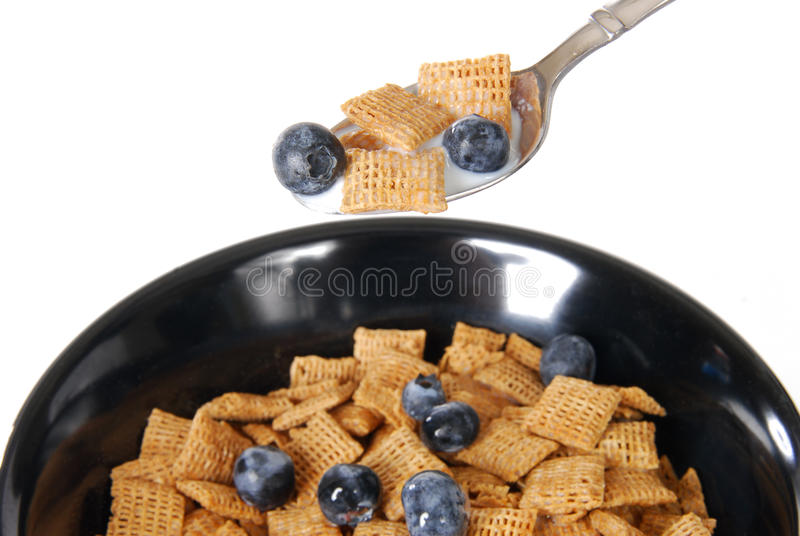 Spoonful of cereal. A spoonful of wheat cereal with blueberries. Focus on spoon stock images