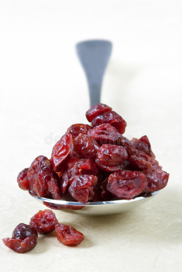 Download Spoonful Of Dried Cranberries Stock Image - Image of image, eating: 11173025