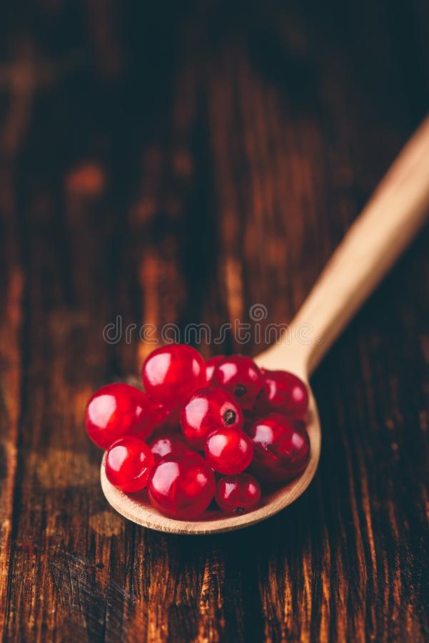 Spoonful of red currant. Over the dark wooden surface royalty free stock photo
