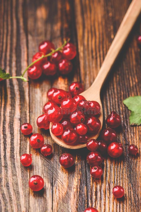 Spoonful of red currant. Over the dark wooden surface stock photo