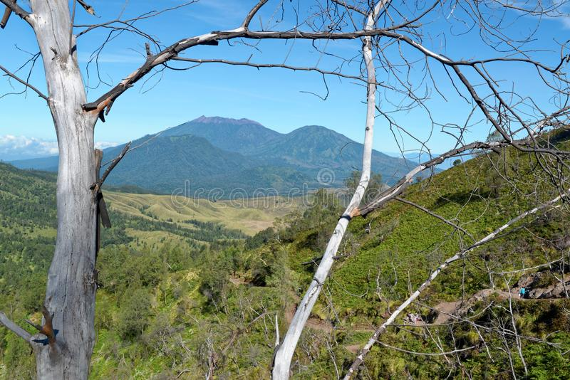 Spoor aan Ijen Volcano Crater stock foto