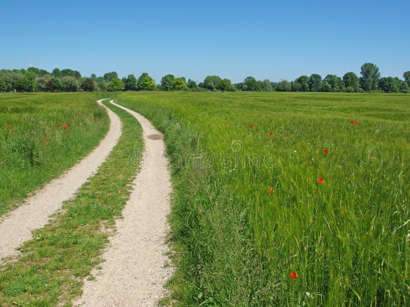 Spoor door platteland