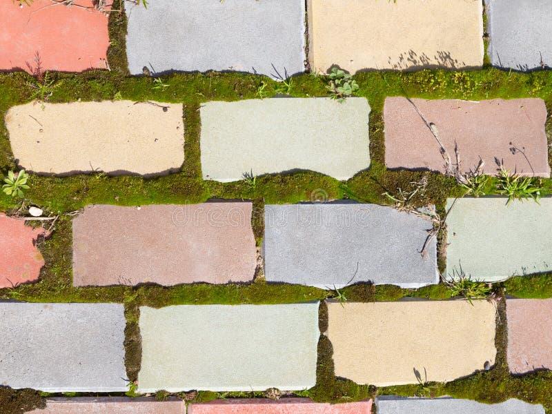 Spoor van multi-colored baksteen en mos royalty-vrije stock foto