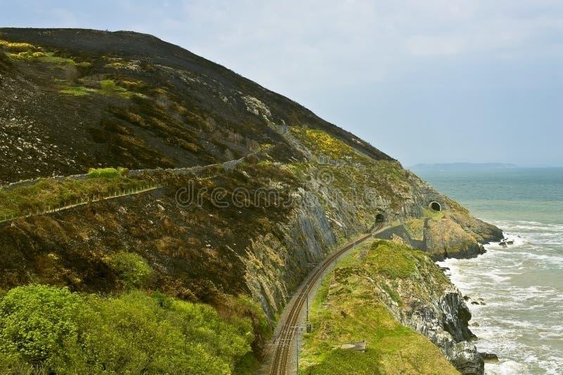 Spoorweg in bergen royalty-vrije stock afbeelding