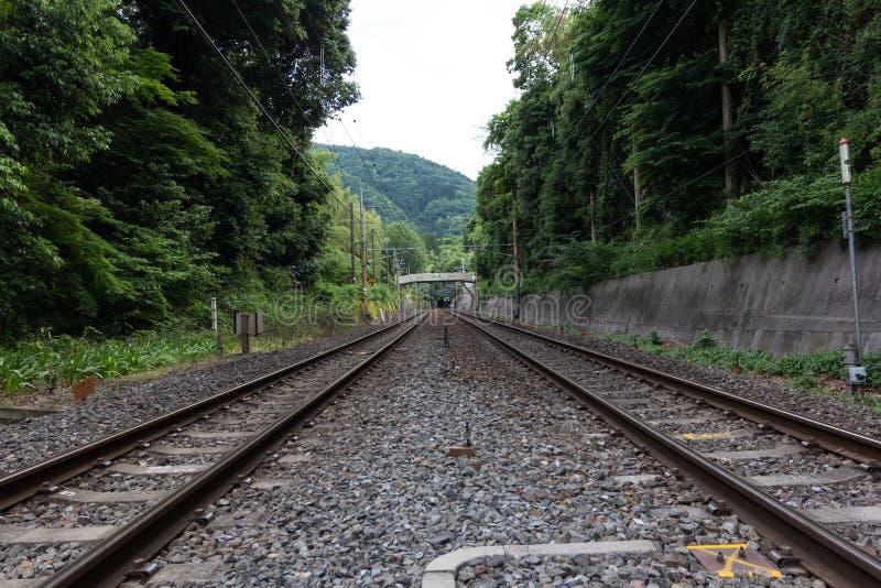 Spoorweg in de berg stock fotografie