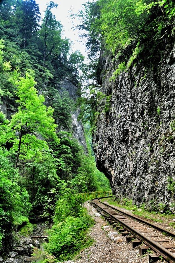 Spoorweg in de kloof van Guam op één kant van de rotsen, andere een diepe afgrond en kokende snelle rivier stock foto's