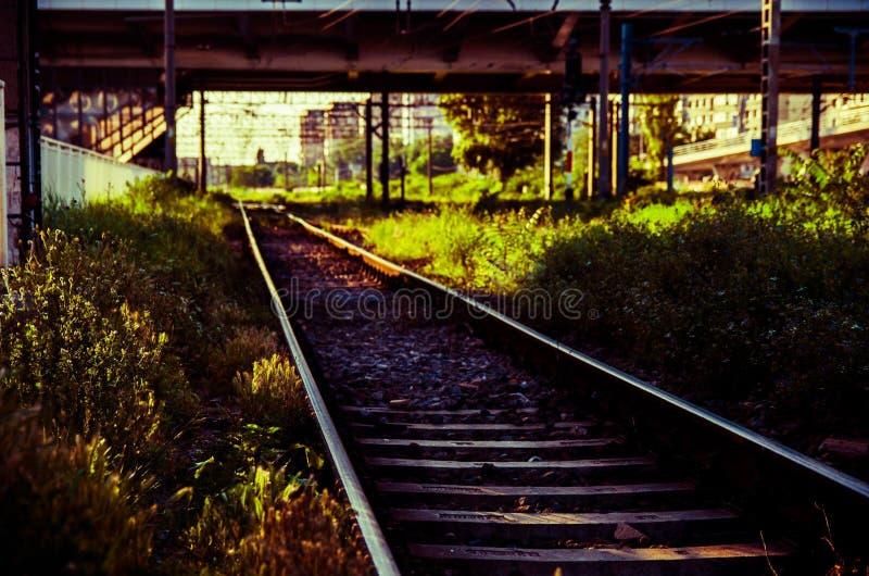 Spoorweg in de schemer royalty-vrije stock foto