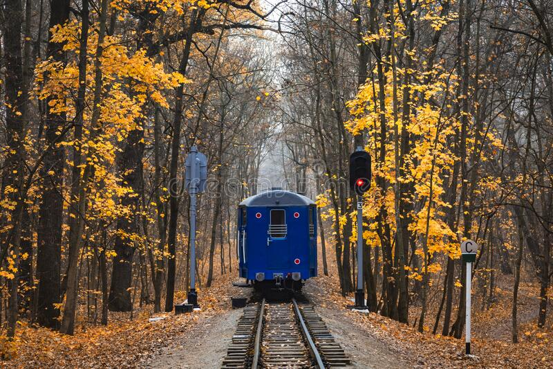 Spoorweg door het bos in het najaar Vluchtlandschap rood stopsemafoor-signaal Laatste spoorwegvervoer van blauwe trein stock afbeeldingen