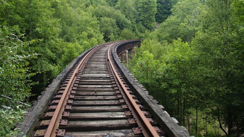 Spoorweg in het hout royalty-vrije stock afbeelding