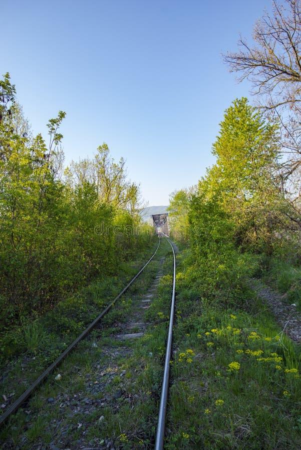 Spoorwegbrug in de lente stock foto