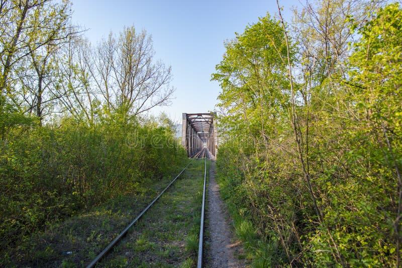 Spoorwegbrug in de lente stock foto's