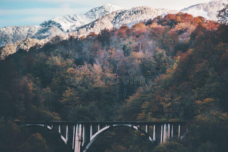 Spoorwegbrug en sneeuwbergenlandschap stock foto