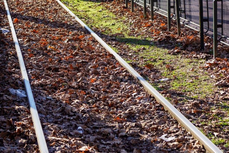 Spoorwegsporen door de herfsthout worden gesneden in Blauwe Rand, Georgië dat royalty-vrije stock fotografie