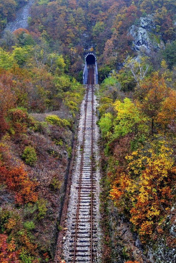 Spoorwegtunnel in de berg royalty-vrije stock afbeeldingen