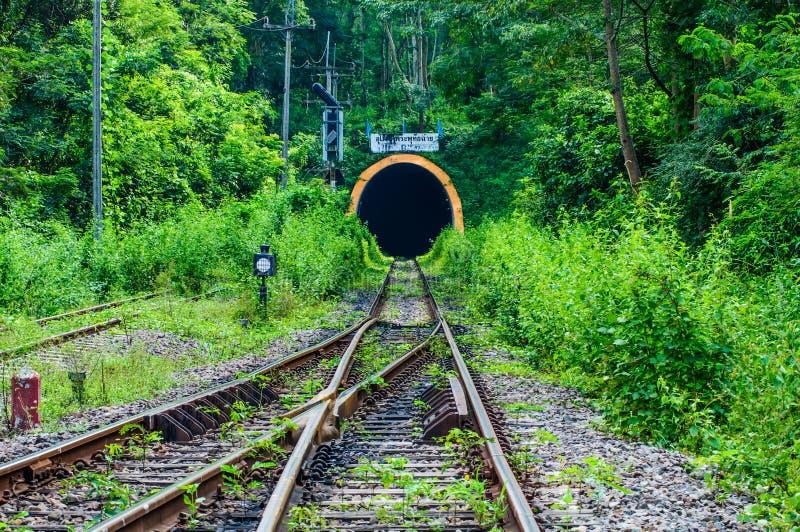 Spoorwegtunnel door de bergen stock afbeeldingen