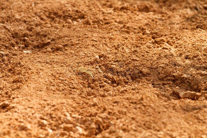 Sporcizia rossa del terreno argilloso in un campo dell'azienda agricola immagini stock