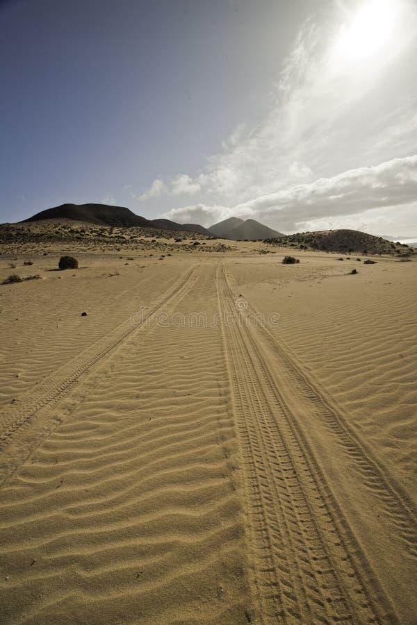 Sporen in het zand stock foto's