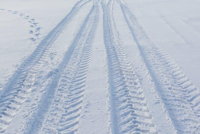 Sporen op een sneeuw stock fotografie