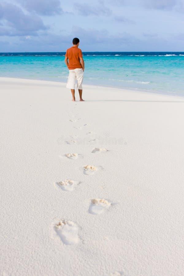 Sporen op zand stock fotografie