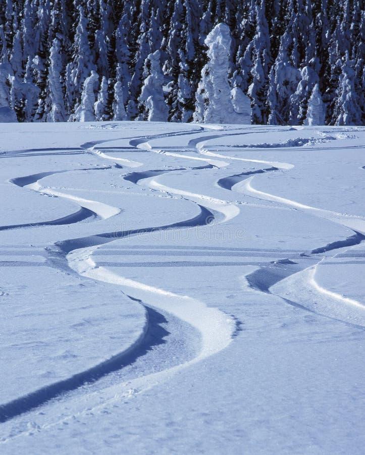 Sporen in sneeuw stock foto's